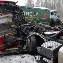 Tarptautinė avarija: apvažiuodamas lenko ir esto kaktomušą, nuo šlaito nulėkė latvis