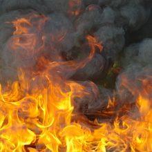 Ugniagesiai sukelti ant kojų: Alytuje užsidegė cechas
