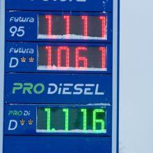 Analizė: degalų kainos šiais metais stabilizavosi