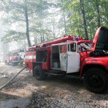 Dėl gaisrų pavojaus ribojamas patekimas į miškus <span style=color:red;>(draudimai galioja 17 rajonų)</span>
