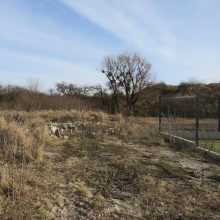 Įžūlumo viršūnė: Kaune nuniokojo saugomą teritoriją