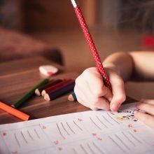 Airijos bendrojo ugdymo mokyklose bus mokoma lietuvių kalbos