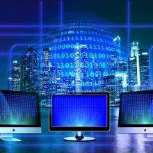 IT ekspertas: sykį paviešinus savo duomenis internete, jie nebebus privatūs