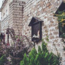 Vyriausybė perdavė Bažnyčiai likusius Vizičių vienuolyno ansamblio pastatus