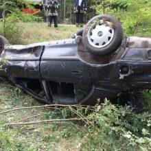 Varėnos rajone į medžius atsitrenkė automobilis, žuvo žmogus