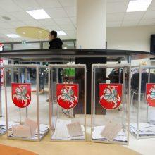 Rinkimai: į Marijampolę grįžta intriga, kas valdys velionio V. Brazio miestą