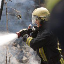 Šiaulių girininkijoje buvo kilęs požeminis miško gaisras