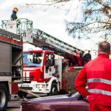 Didžiulis gaisras fermoje: grūdus pavyko išsaugoti, bet sudegė buliai ir veršeliai