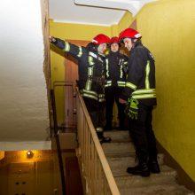 Detektyvas Karmėlavoje: kas užrakino dingusios senolės duris iš vidaus?