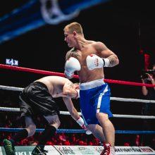 E. Petrauskas jau lapkritį sugrįžta į profesionalų ringą