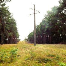 Kuršių nerijos kraštovaizdyje nebeliks elektros oro linijų
