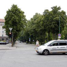 Danės gatvės laukia pokyčiai