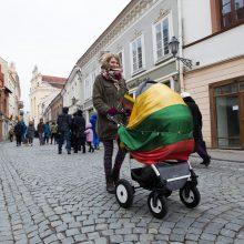 L. Ševtsova: Rusija Lietuvos visuomenę galėtų paveikti tik esant vidaus problemoms
