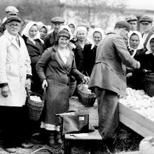 Kiaušinių supirkimas Veliuonoje, XX a. 3–4 dešimtmečiai