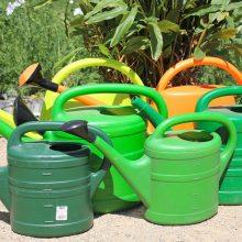 Keturios savivaldybės dėl sausros skelbia ekstremalią situaciją
