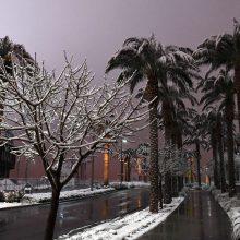 Las Vegasą pirmąkart per 82 metus nuklojo sniegas