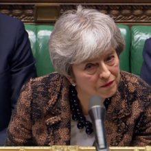 Th. May sako grįšianti į ES aptarti apsidraudžiamosios priemonės dėl Airijos sienos