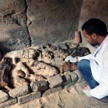 Archeologai Egipte rado dešimtis kačių mumijų