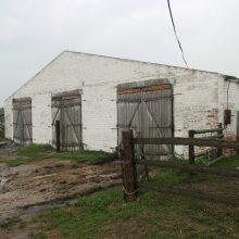 Audra sugriovė fermą su avimis, viena žuvo