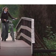 Skandalas dėl medinio tiltelio