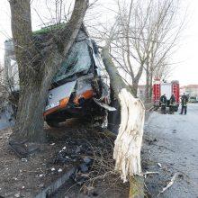 Kraupi avarija Klaipėdoje: autobusas rėžėsi į medį, sužeisti keleiviai