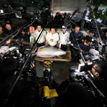 Už tuną –  daugiau nei 268 tūkst. eurų