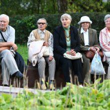 R. Vainienė: pensijų sistemos pokyčiai primena baldų perstatymą