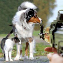 Abejingumas: kai kurių žmonių požiūris į gyvūnus šokiruoja net visko mačiusius prieglaudų darbuotojus.