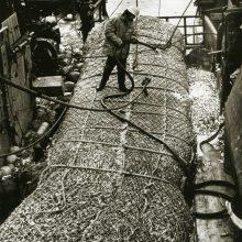 Užmojai: sovietų netenkino įprastu būdu pasaulio vandenyse kasmet sugaunamų šimtai tūkstančių tonų žuvų kiekiai, todėl ieškota būdų, kaip dar labiau išvystyti pramoninę žūklę.