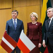"""Trijų parlamentų vadovai: """"Nord Stream 2"""" yra Rusijos politikos instrumentas"""