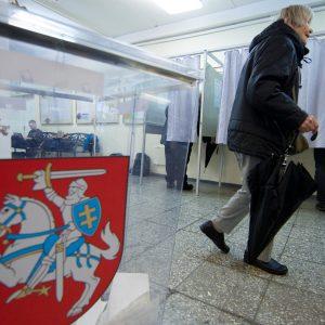 Atmesta: pirmalaikių Seimo rinkimų nebus