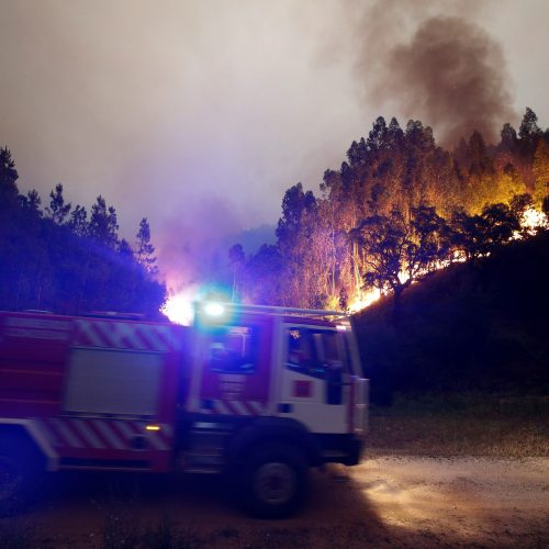 Miško gaisrai Portugalijoje  © Scanpix nuotr.