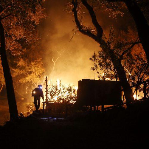 Pietų Kalifornijoje – nesutramdomi miškų gaisrai