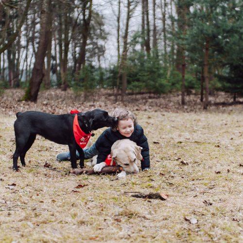 Šunų susitikimas prie Pažaislio vienuolyno