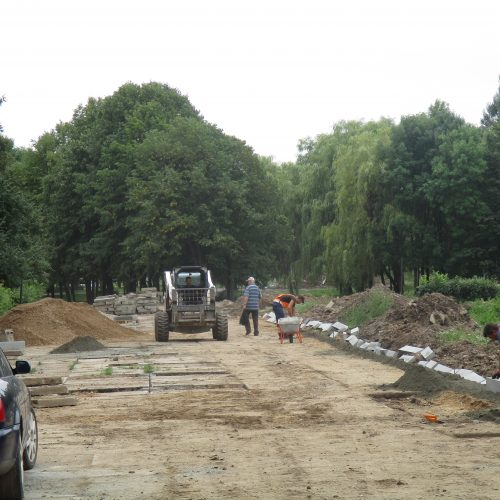 Draugystės parko rekonstrukcija