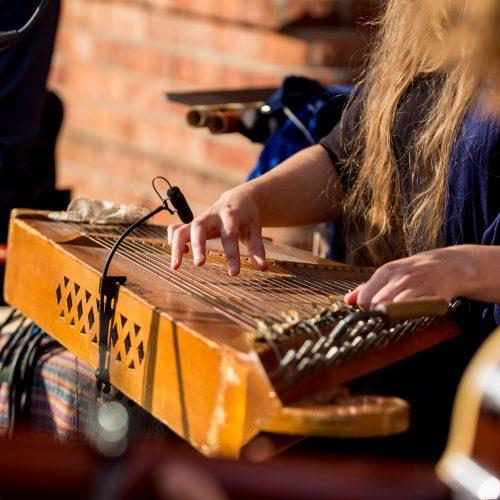 """Koncertas """"Kartais muzika teka taip ramiai...""""  © Vilmanto Raupelio nuotr."""