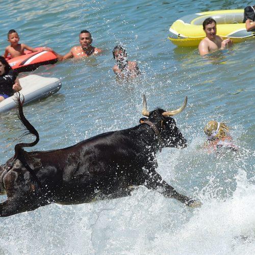 Maudynės su buliais Ispanijoje