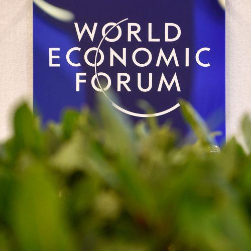 Prezidentė dalyvauja Pasaulio ekonomikos forume  © R. Dačkaus / Prezidentūros nuotr.