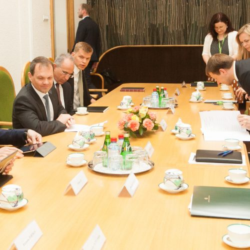 TVF misija baigė darbą Lietuvoje