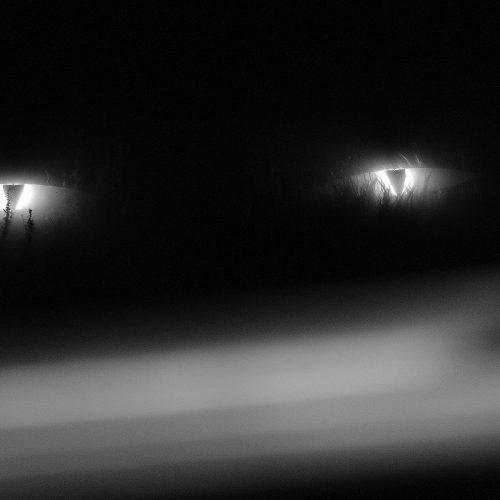 Kauno mito kūrimas. Pradžia  © Evaldo Šemioto nuotr.