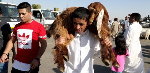 Pasaulio musulmonai pradeda keturias dienas truksiančią Aukojimo šventę