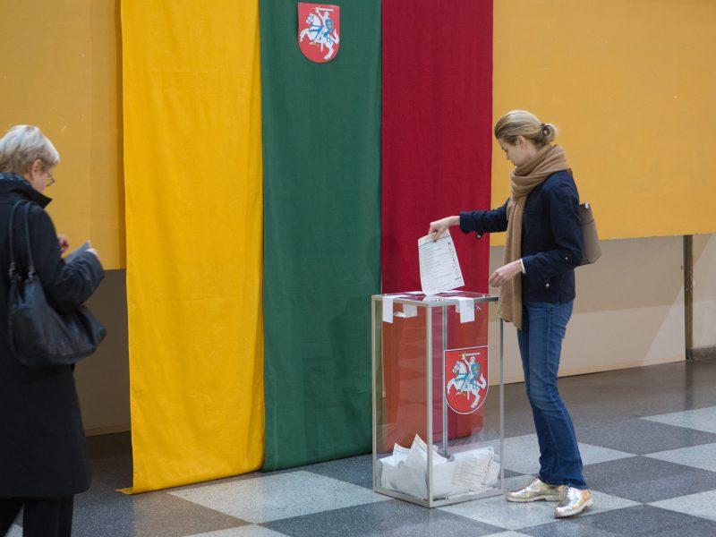 Siūlo, kad referendumas dėl dvigubos pilietybės vyktų dvi dienas