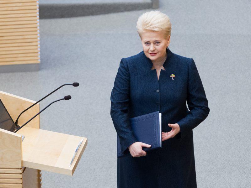 Ekspertai apie metinį pranešimą: prezidentė tapo visos aikštelės stratege