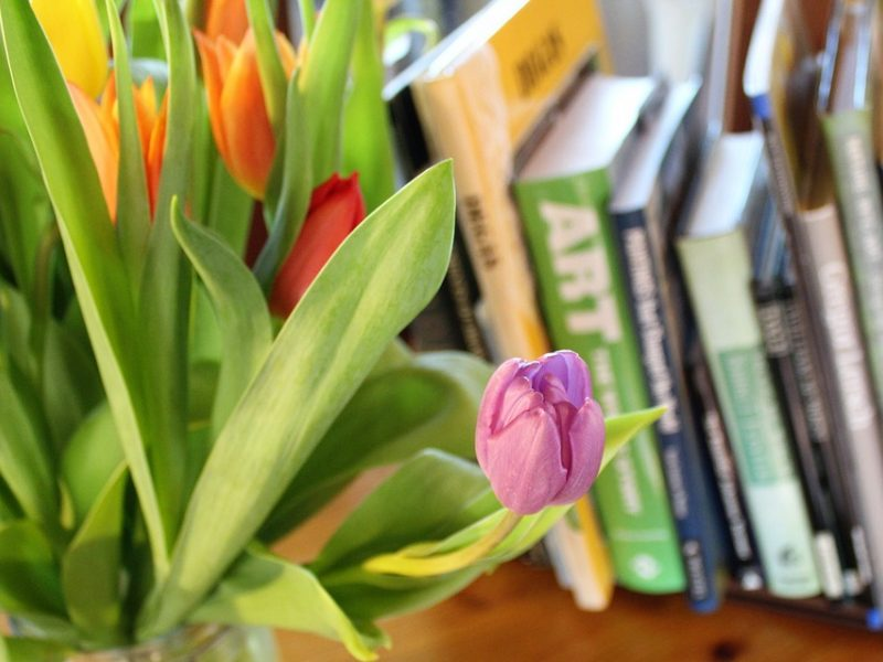Ką skaityti pavasarį? <span style=color:red;>(knygų apžvalgos)</span>