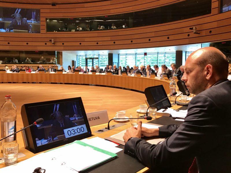 Viceministras: svarbu stiprinti ES ir NATO bendradarbiavimą saugumo srityje