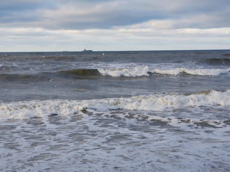 Naujausios technologijos ir tyrimai – kovai su tarša Baltijos jūroje