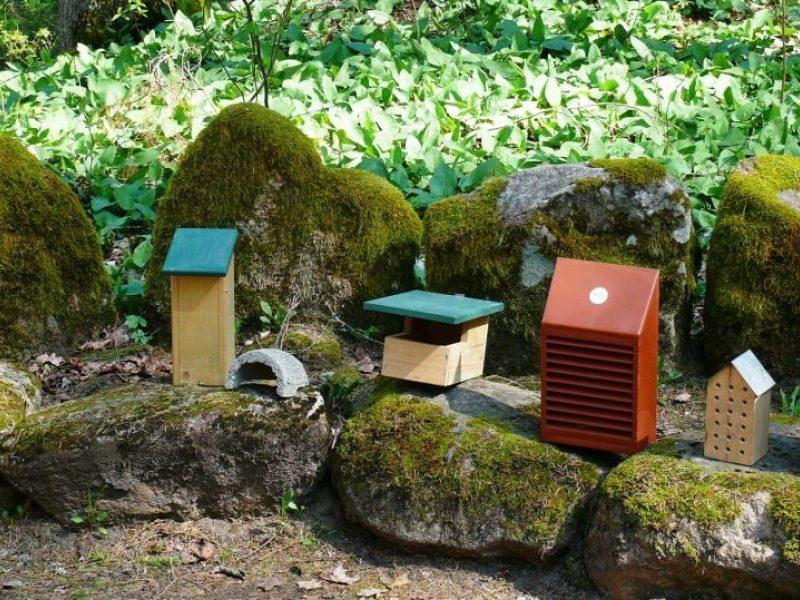 Inkilai – ne vien paukščiams