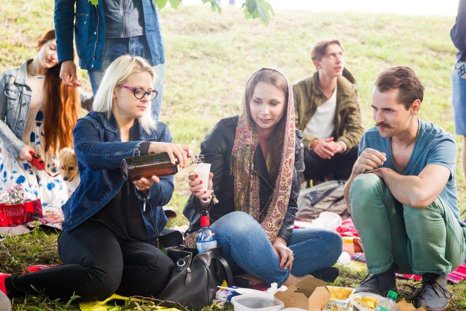 Veganų piknikas