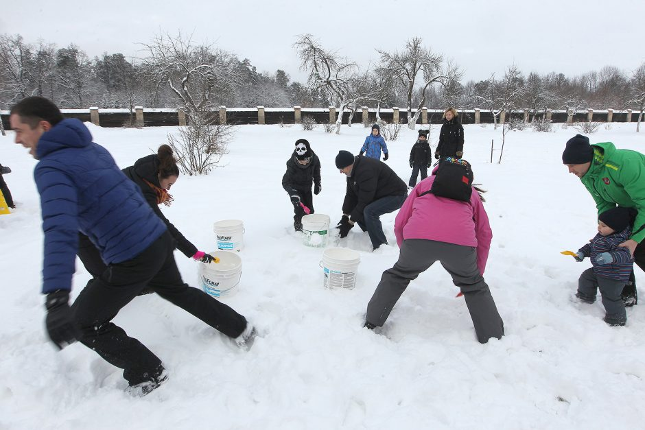 Sniego dienos pramogos į Pažaislį sukvietė būrį kauniečių
