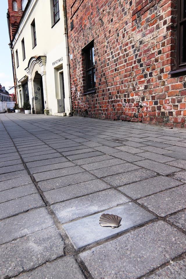 Kaunas pasipuošė įstabiomis Šv. Jokūbo kriauklėmis